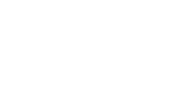 Full Scoop Marketing
